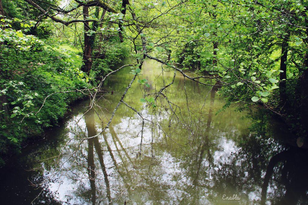 La Mayenne, la nature comme on aime
