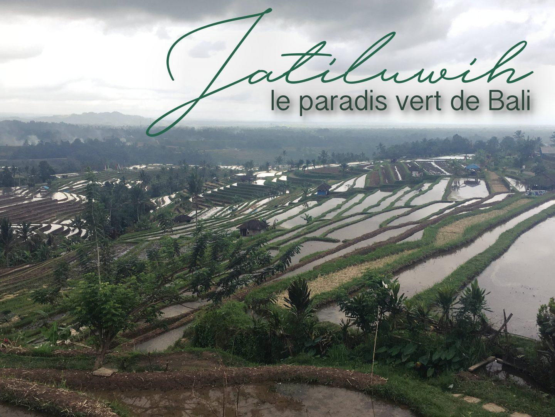 Le paradis vert de Jatiluwih
